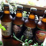 伊勢角屋麦酒のビールがたくさん入荷しています!